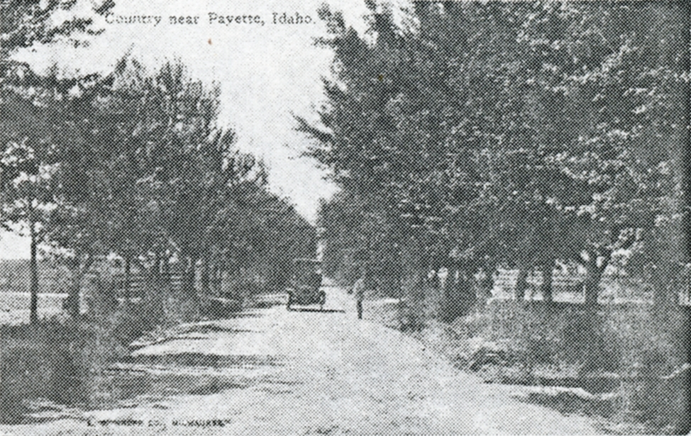 Country Road c. 1910